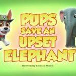 Psi Patrol - Pieski ratują zdenerwowanego słonia [s05]
