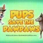 Psi Patrol - Pieski ratują papaję [sezon 5]