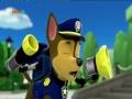 Psi Patrol – Pieski ratują nietoperza