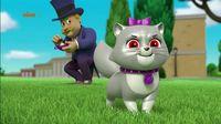 Psi Patrol – Pieski ratują pokaz kotów – Sezon 4