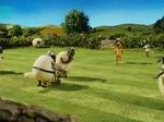 Shaun The Sheep - Spoilsport - SEZON 5