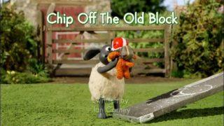 Baranek Shaun The Sheep – Chip off the Old Block