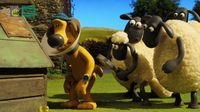 Shaun the Sheep – Cone of shame – SEZON 5