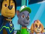 Psi Patrol - Pieski ratują zgubiony ząb