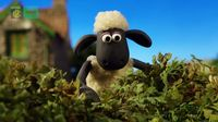 Shaun The Sheep – Rude dude – SEZON 5
