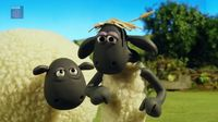 Shaun the Sheep – Baa-d hair day – SEZON 5