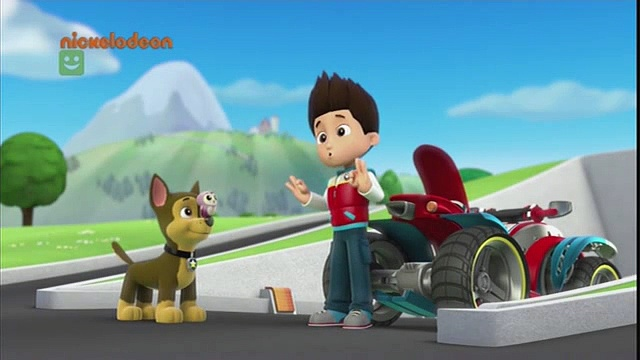 Psi patrol – Pieski i sowa